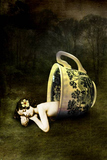 Catrin Welz-Stein - The teacup